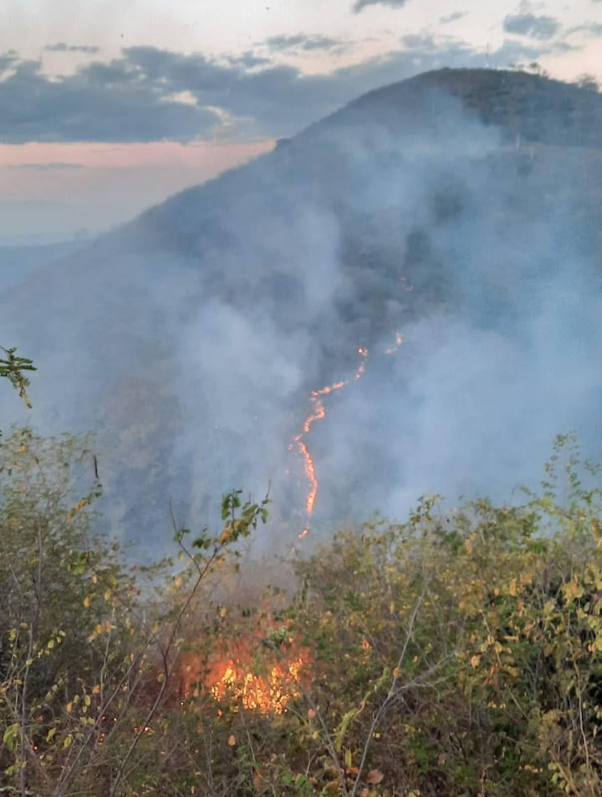 Incêndio em vegetação de Cariús