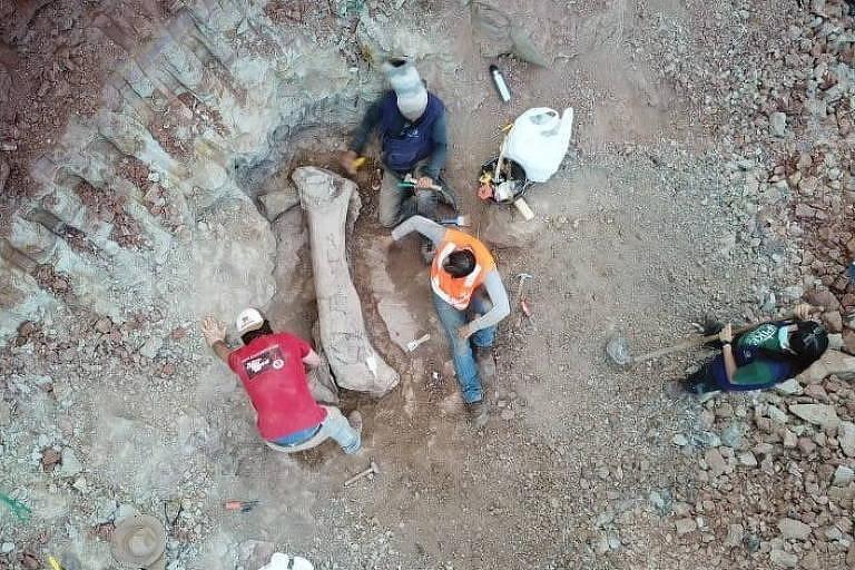 Imagem de drone mostra homens retirando da área de obra ossos largos do dino